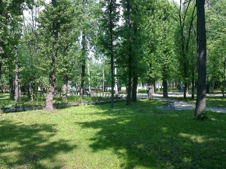 Воробьевы горы Парки москвы